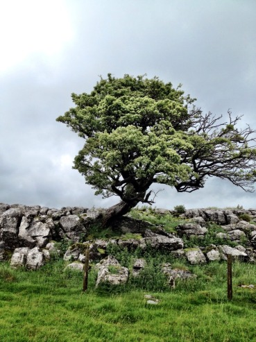 Malham Cove Sunday 1st July