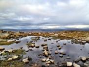 17-Yorkshire 3 Peaks.scaled1000-016