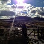 20-Yorkshire 3 Peaks.scaled1000-019