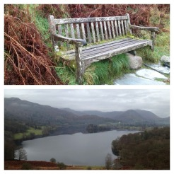 09-Loughrigg.scaled1000-008